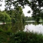 Park na Młynku w Łodzi