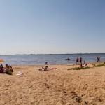 Dzika plaża w Kolonii Popów nad Jeziorskiem