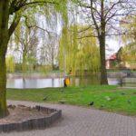 Park im. Stefana Złotnickiego w Zduńskiej Woli